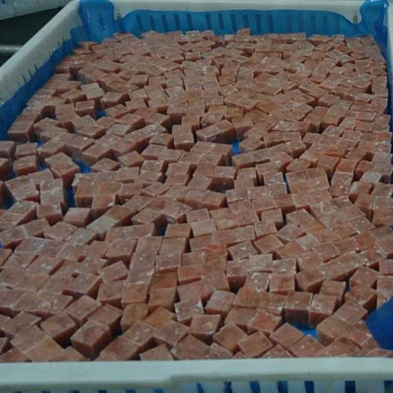 Gefrorener rosa Lachswürfel