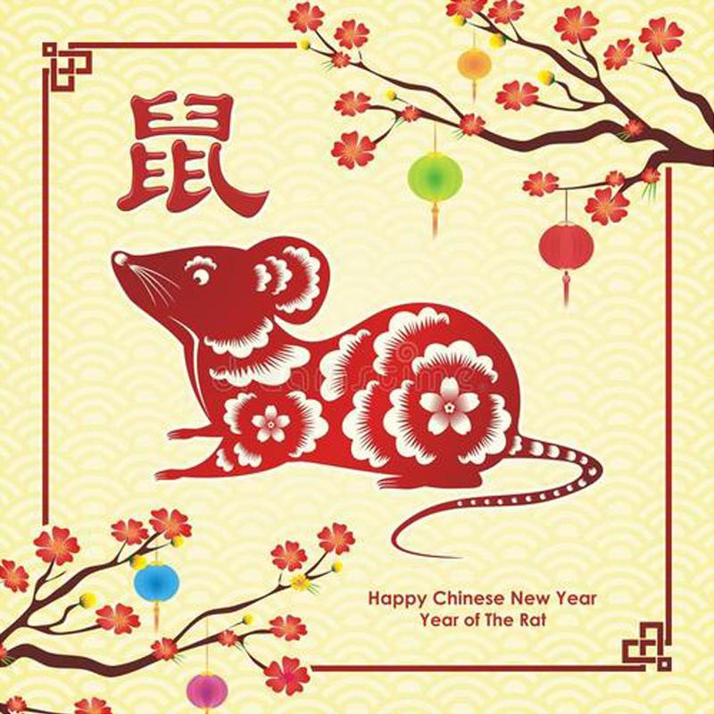Frohes chinesisches Neues Jahr!