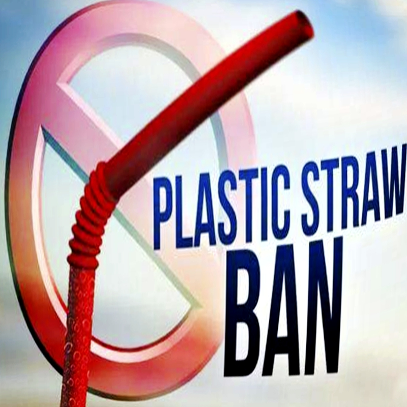 Was ist zu ersetzen, nachdem Plastikstroh verboten ist?